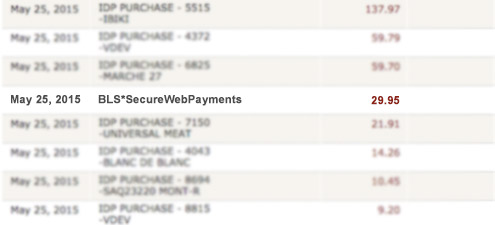 BLS Secure Web Payments